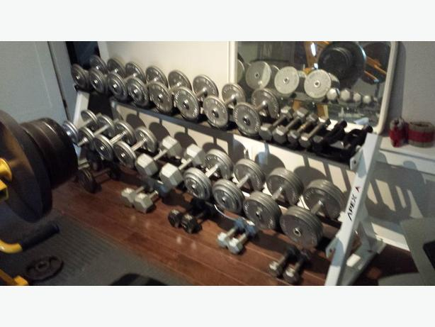 WANTED: Apex Fitness Commercial Dumbbell Rack