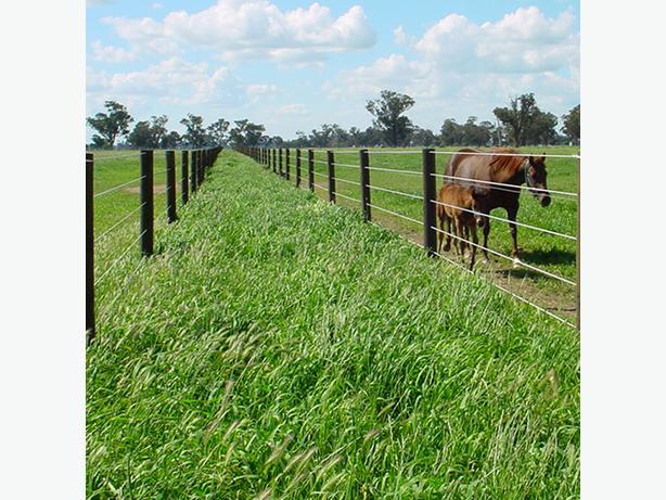 ** Horse & Livestock Fencing **