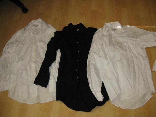 Mens Dress Shirts In Size Large