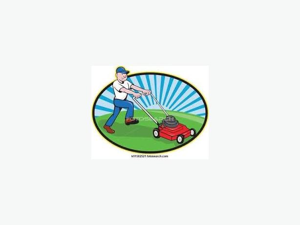 Lawnmower Tune-ups *Best rates in Town*