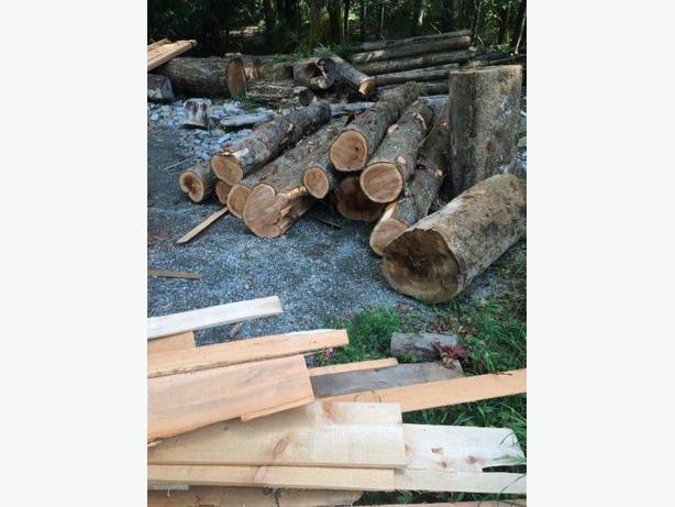WANTED: cedar and fir logs