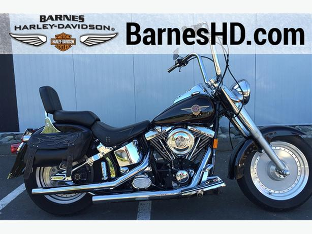 1999 Harley-Davidson® FLSTF