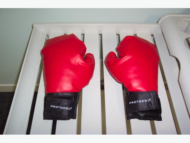 Protocol Boxing Gloves