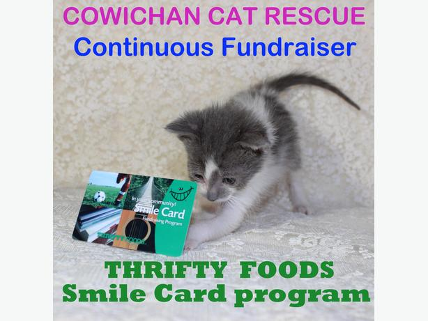 Cowichan Cat Rescue - Smile Card with Thrifty Foods
