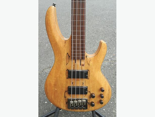 ESP LTD Lined Fretless 4 String Bass Guitar Spalted Maple