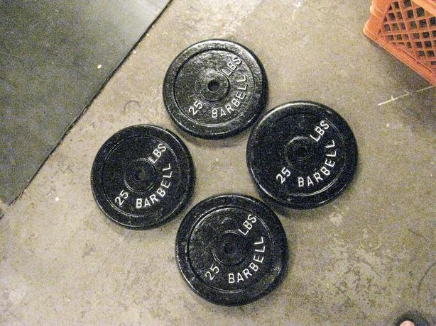 4- 25 LB METAL WEIGHT PLATES