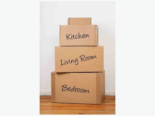 Professional Packing + Cleaning Services