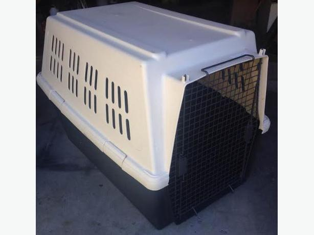 Giant Breed Plastic Dog Crate