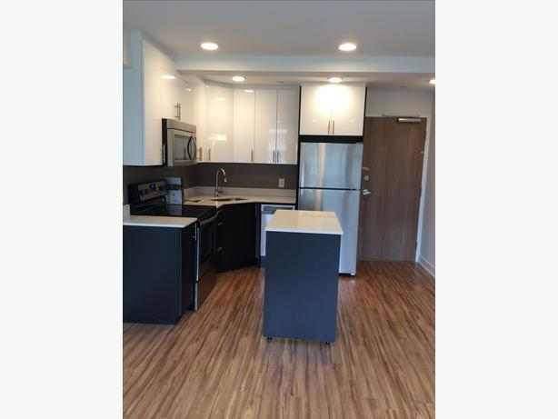 BRAND NEW 1 Bedroom Condo Style Suite for Rent- CENTRETOWN WEST
