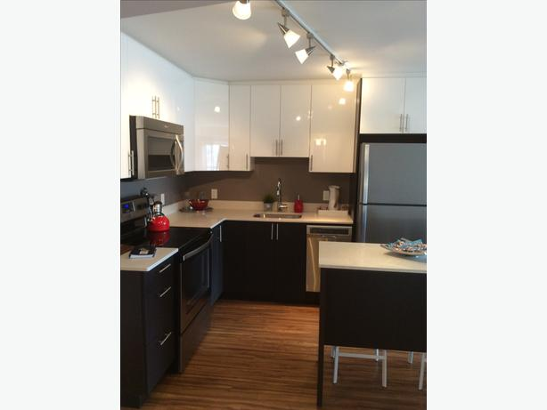 NEWLY RENOVATED 1 Bedroom Condo Style Suite for Rent- CENTRETOWN WEST