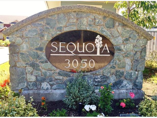 Brand New Phase 4 at Sequoia Townhomes!