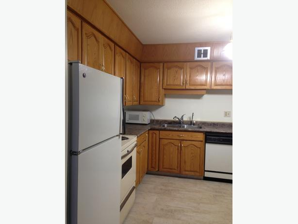 Mississauga Room For Rent Lady