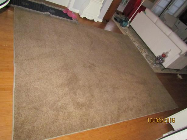 Large 8 X 10 Medium Brown Area Rug Carpet Outside