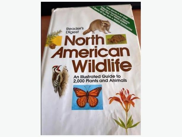 North American Wildlife - Illustrated Guide