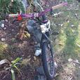 Trials Bike (ZHI ZM2) - $600 OBO