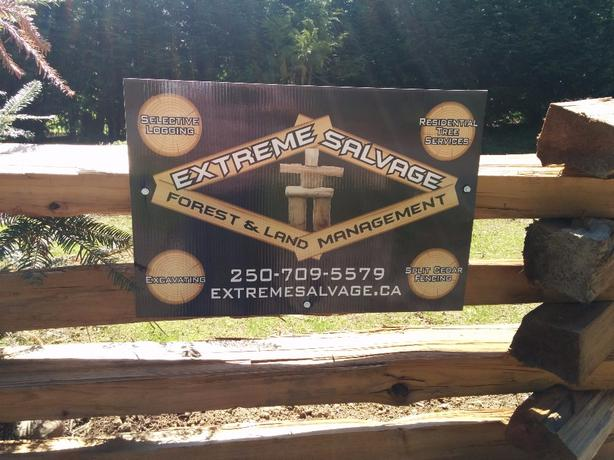 Lets Turn Your Trees Into $$.  Free tree services
