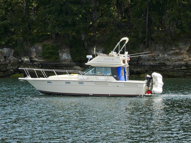 Tiara 3100 Pursuit W/Flybridge