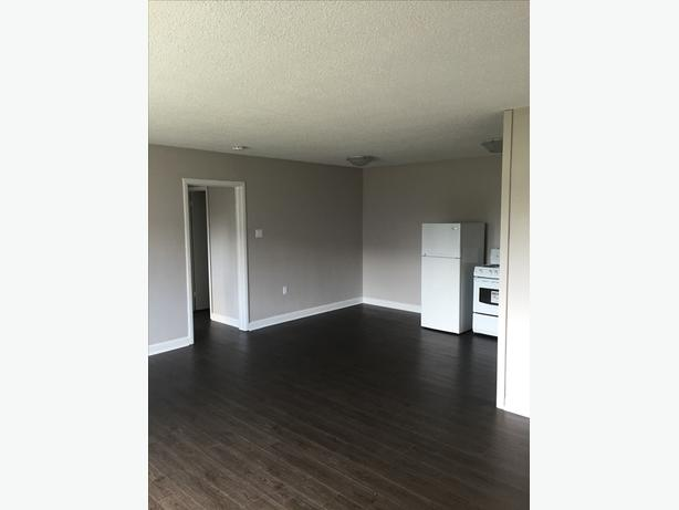 Steps From Algonquin - 2 BDRM Apartment