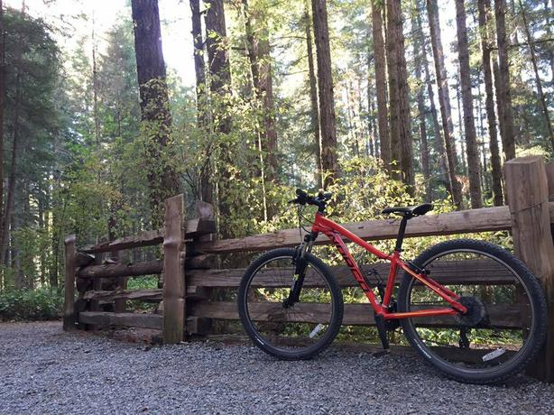 Norco Storm 7.3
