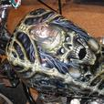 AiRbRuSH Art work for your Car, Motor Cycle, RV, Business Vehicle & More !