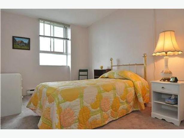 Room near OU and Cite Colegiale