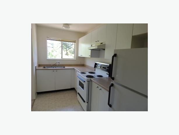 2 bdrm available immediately