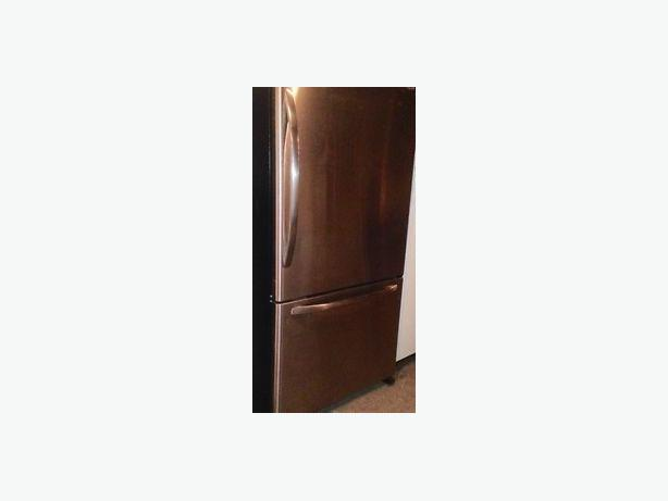 Stainless Amana Fridge