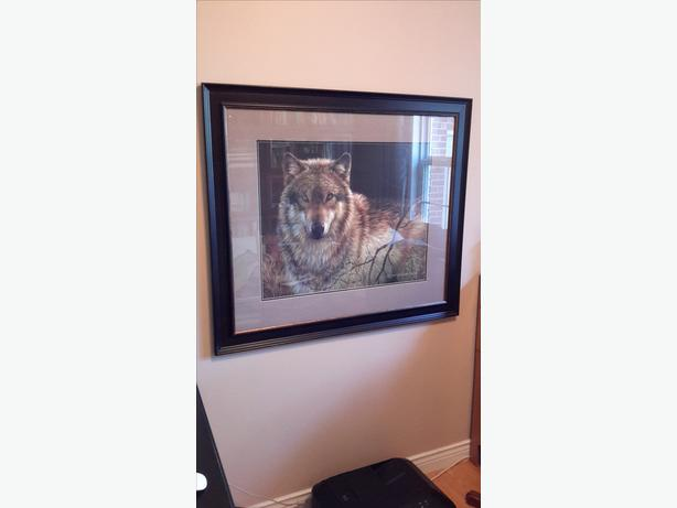 LARGE FRAMED WOLF PRINT