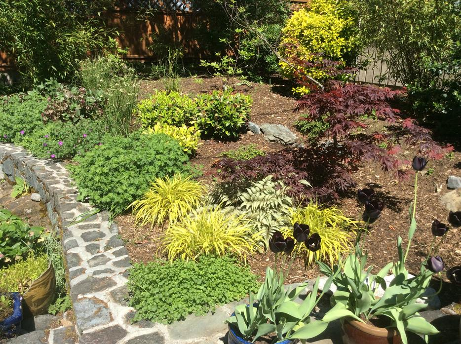 Garden Design Victoria Bc bellaview landscape and garden: villa taranto terraced gardens