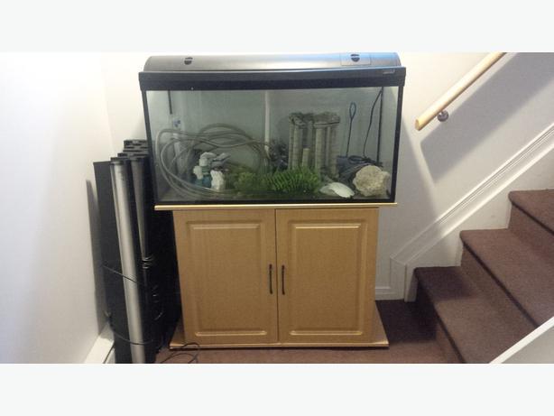 55 gallon aquarium gatineau sector quebec gatineau for 55 gallon fish tank lid