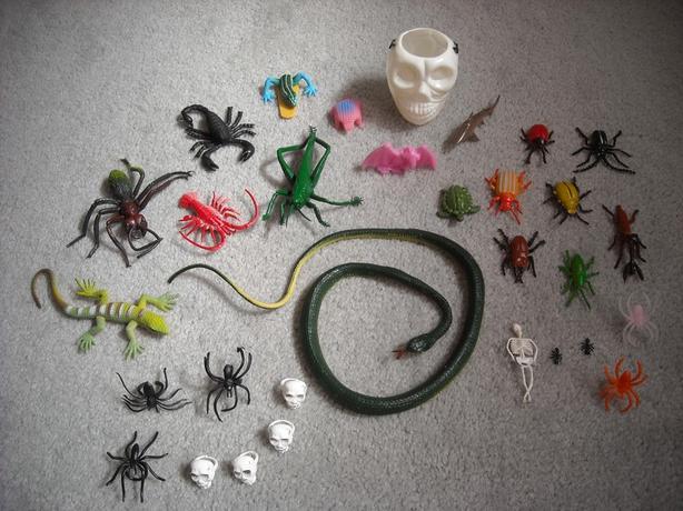 Bugs/Reptiles/Skeletons