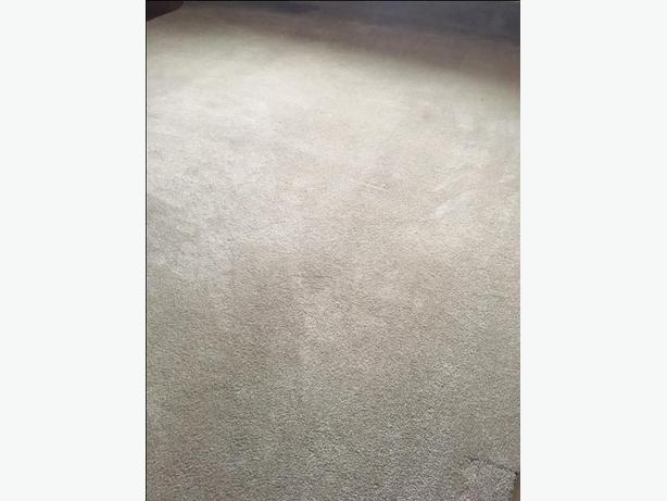 Large Beige Trimmed Carpet