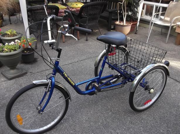 Tri-Rider trike