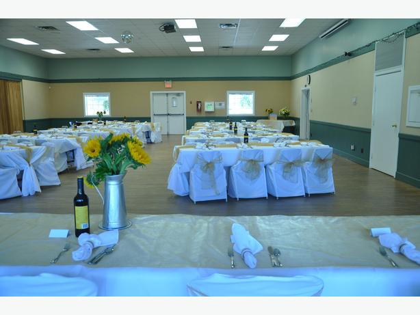 Wedding Linen/Tablecloths/Chair Covers/Sashes/Napkins/Rings