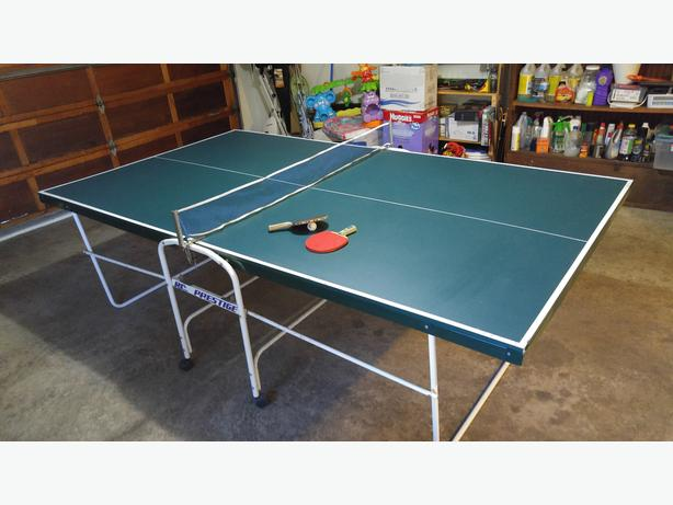 Ping Pong Table Kitchener Waterloo