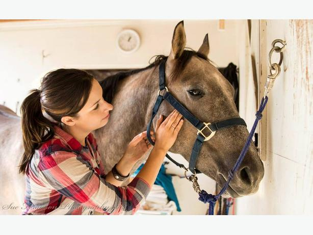 Equine Massage in Nanaimo / Errington