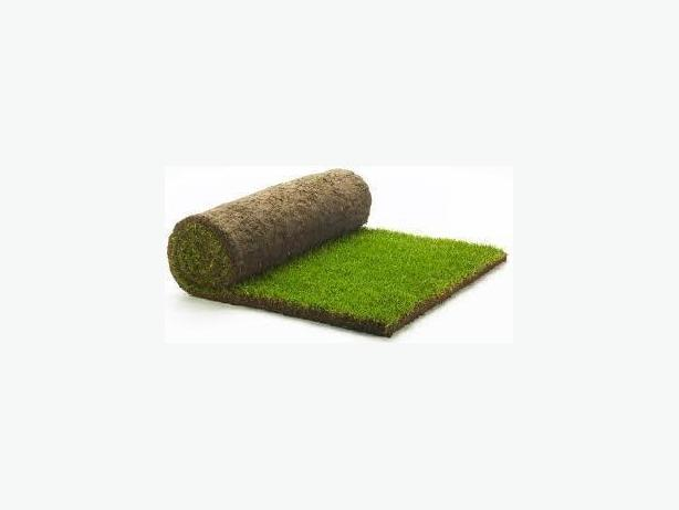 WANTED: Your leftover turf
