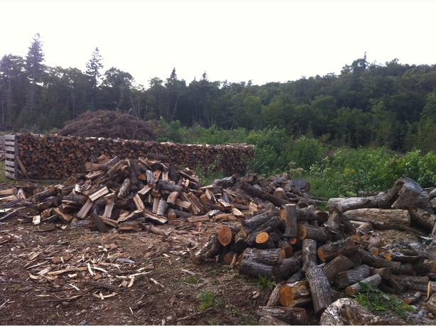 Dry, seasoned firewood for sale