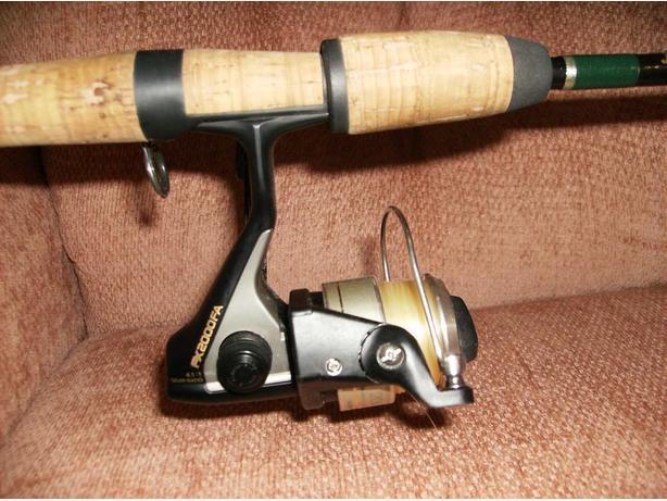 Fenwick Trout Rod / Shimano Reel