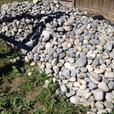 Landscaping River Rock