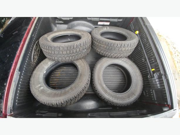 Motomaster Studded Winter Tires