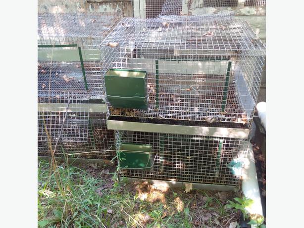 Four Rabbit Cages ($80)