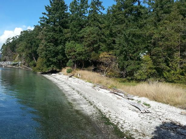 Three adjoining waterfront lots for sale  on Piers Island, BC.