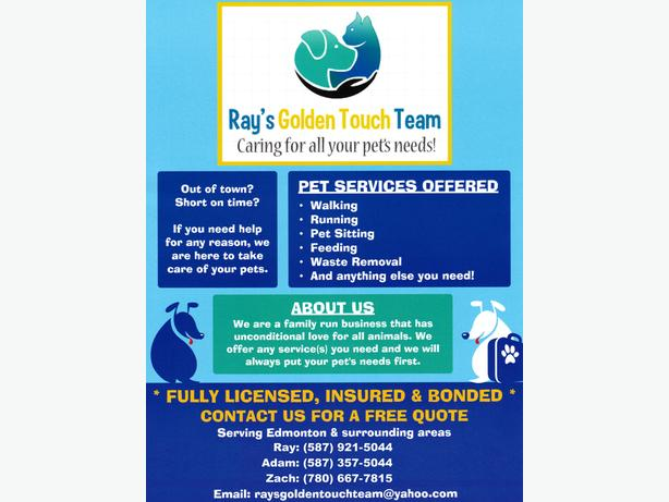 Ray's Golden Touch Team - Pet Services (looking for new clients)
