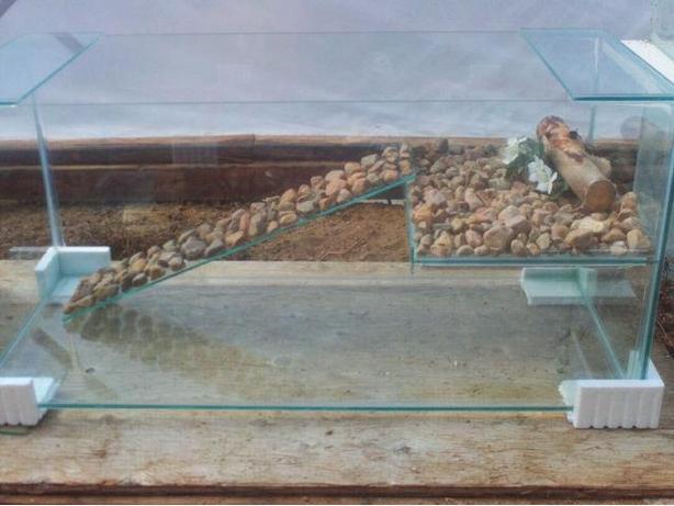 New 40 Gallon Turtle Tank
