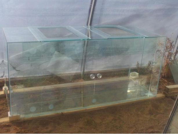New 290 Gallon Terrarium