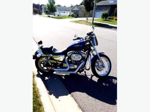 2006 harley sportster 883 xl low