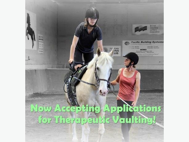 Now Accepting Applicants for Therapeutic Vaulting