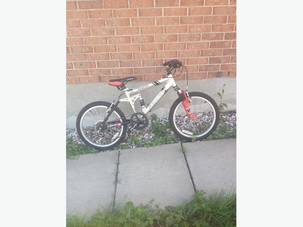 Children's Schwinn bicycle