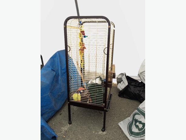 Big parott cage